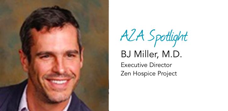 Spotlight: BJ Miller